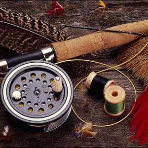 Охотничьи и рыболовные магазины Кохмы