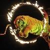 Цирки в Кохме